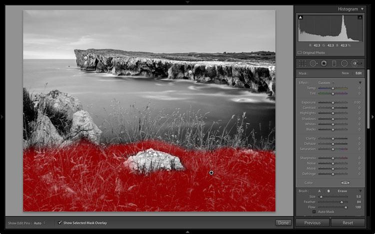 Фильтр для обработки фото черно белый с цветами