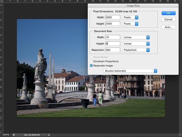 Пиксели, разрешение и печать цифровых изображений | 567x750