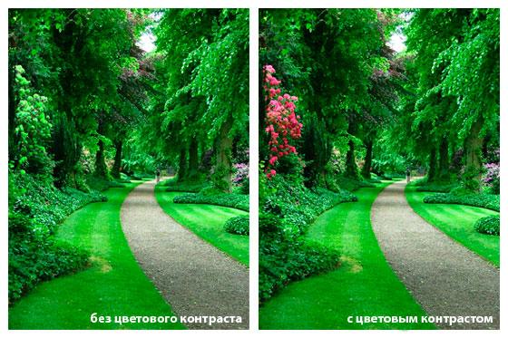контраст в фотографии